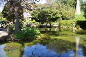 Feng Shui garden4