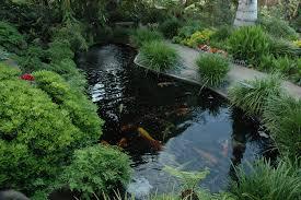 Feng Shui garden7