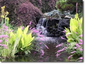 Feng Shui garden9