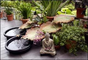 Feng Shui garden3